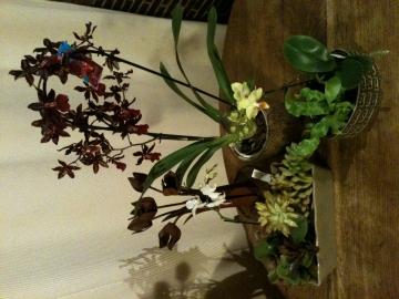 http://ceronne-creations-univers-de-bougies.hautetfort.com/media/00/02/3688399473.JPG